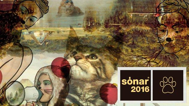 Las gatitas del Sónar 2016